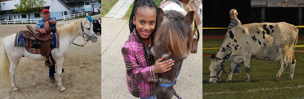 Pony Parties, Petting Zoos in Philadelphia, PA